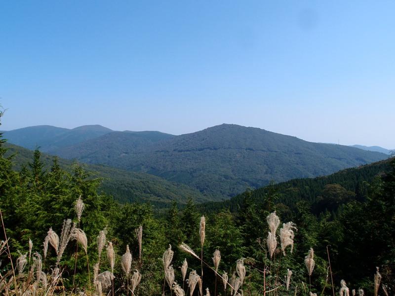 PA143069 林道から.JPG